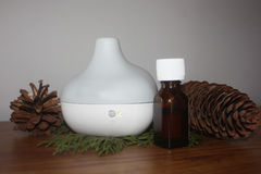 Essential Oil Diffuser with Evergreen Royalty Free Stock Photography