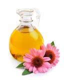 Essential oil of Echinacea Stock Images