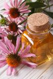 Essential oil of Echinacea purpurea closeup vertical Stock Image