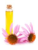 Essential oil of Echinacea purpurea isolated on white background Stock Photo