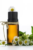Essential oil, empty tags and chamomile. Flowers Stock Photos