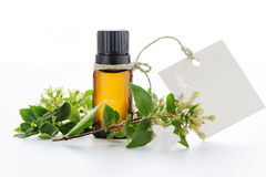 Essential oil, empty tags and  flowers Stock Image