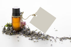 Essential oil, empty tags and lavender flowers Stock Photography