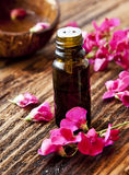 Essential Oil Royalty Free Stock Photos