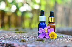 Essential oil with flower Stock Photography