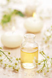 Essential oil and flowers Stock Photography