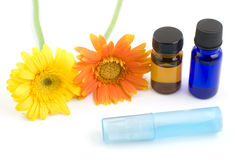 Essential oil and gerbera daisy Stock Photography