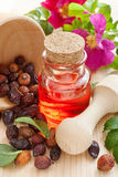 Essential oil in glass bottle, dried rose-hip berries and rose h royalty free stock photography