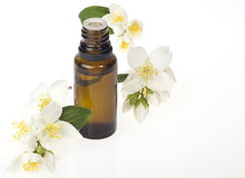 Essential Oil. Glass bottle with essential oil and flowers on a white background Royalty Free Stock Photos