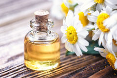 Essential oil in glass bottle with fresh chamomile flowers, beauty treatment. Spa concept. Selective focus. Fragrant oil of chamomile flowers, macro on wooden Stock Photography