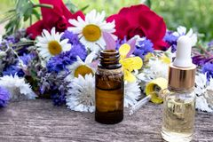 Essential oil in a glass bottle near wildflowers on wooden background stock image