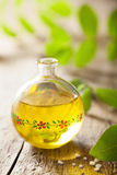 Essential oil and herbs Stock Images