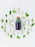 Essential oil  with holy basil leaf and flower. Royalty Free Stock Images