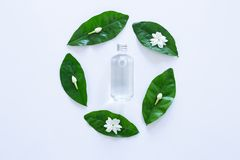 Essential oil with jasmine flower on white. Background stock photos
