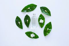 Essential oil with jasmine flower on white. Background stock photography
