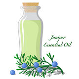 Essential oil of juniper Stock Image