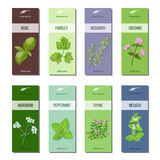 Essential oil labels collection. Basil, parsley, rosemary, oregano, marjoram, peppermint, melissa, thyme. Stripes Stock Image