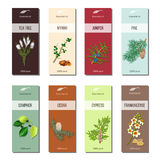 Essential oil labels collection. Tea tree, myrrh, juniper, pine , cinnamon, camphor, cedar, cypress, frankincense Stock Photos