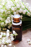 Essential oil and Lily of the valley Stock Photo