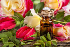 Essential oil made from roses Stock Image