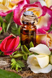 Essential oil made from roses Royalty Free Stock Photography