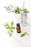 Essential oil Stock Image