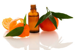 Essential oil of orange mandarin citrus fruit in little bottle d Stock Images