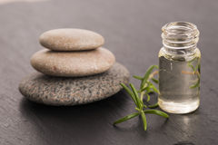 Essential oil with rosemary Stock Photography
