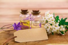Flower essential oil with tag. Essential oil in small bottle with spring flower and tag on wood for your text Stock Image