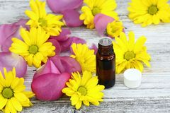 Essential oil from sweet smelling flowers Royalty Free Stock Photo