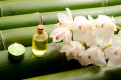 Essential oil and white orchid. Flowers on a tightly arranged large bamboo background Royalty Free Stock Image