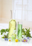 Essential oils for aromatherapy treatment with fresh herbs Royalty Free Stock Images