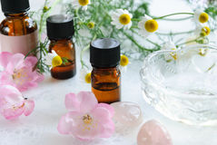 Essential oils with chamomile and pink flowers Stock Images