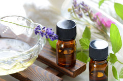 Essential oils and cosmetics with lavender and herbs. Essential oils and cosmetics with lavender and herbal flowers for aromatherapy treatment stock images