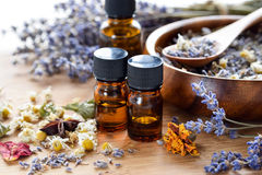 Essential oils with dried herbs stock images