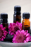 Essential oils and flowers. A vertical image of essential oils and flowers in a spa setting Royalty Free Stock Photo