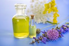 Essential oils in studio. Essential oils in front of white background Royalty Free Stock Photos