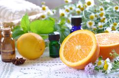 Essential oils with fruits. Fruits with essential oils and herbs stock photo