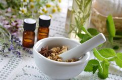 Essential oils and herbal cosmetics. With herbs royalty free stock image