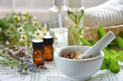 Essential oils and herbal cosmetics. With herbs royalty free stock photography