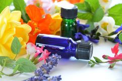 Essential oils with herbal flowers Stock Images
