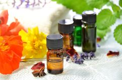 Essential oils with herbal flowers. Essential oils for aromatherapy with herbal flowers Royalty Free Stock Image