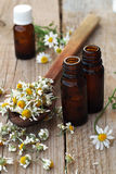 Essential oils and herbs. Dried camomile stock photo