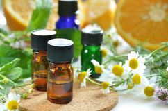 Essential oils with herbs and fruits. Essential oils with herbal flower and fruits royalty free stock photo