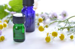 Essential oils with herbs Royalty Free Stock Photography