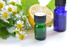 Essential oils with herbs Royalty Free Stock Photo