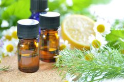 Essential oils with herbs. Essential oils with herbal flower and leaves stock photo