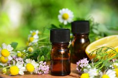 Essential oils with herbs Stock Photography