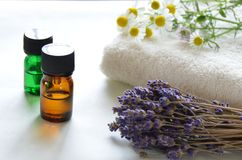 Essential oils with herbs Royalty Free Stock Images