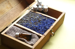 Essential oils and herbs. Wooden chest with essential oils and herbs royalty free stock photo
